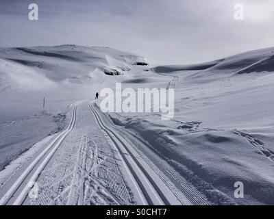 A lonely Nordic skier finding her way through a valley in Hardangervidda, Norway. - Stock Image