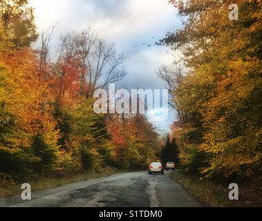 Cars on road with autumn trees - Stock Image