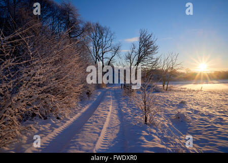 Country lane toward the sun on a a sunny early winter morning - Stock Image
