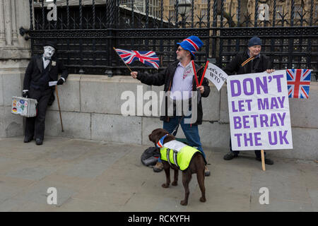 On the day that Prime Minister Theresa May's Meaningful Brexit vote is taken in the UK Parliament, Leave supporters protest at the railings of the House of Commons in Parliament Square on 15th January 2019, in Westminster, London, England. - Stock Image