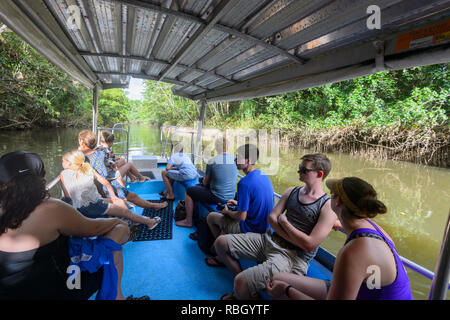 Tourists on a Daintree River Cruise, Daintree National Park, Wet Tropics, Far North Queensland, FNQ, QLD, Australia - Stock Image