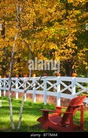 small pumpkins on rural country farm fence - Stock Image