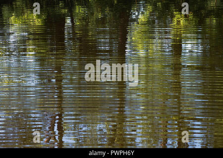 France, Canal de La Martiniere, close-up of the ripples on the surface of the water, spring. - Stock Image