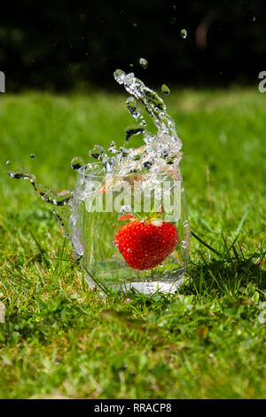 slow motion of a strawberry splashing into a glass of water evocative of summer and bright sunny days - Stock Image