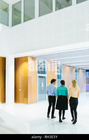 Young coworkers talking on corridor - Stock Image
