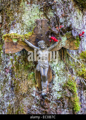 A crucifix on a tree in a Swiss wood - Stock Image