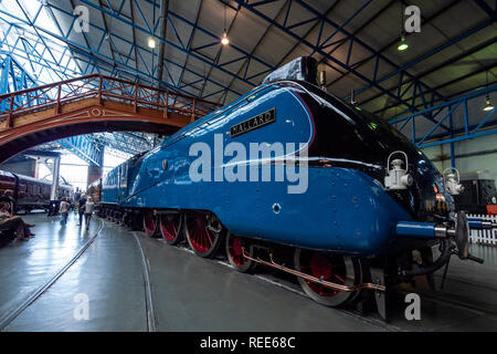 Mallard no 4468 the fastest ever steam train in the Great Hall National Railway Museum York Yorkshire England - Stock Image
