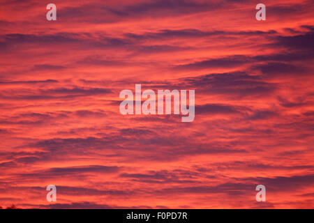 Pink clouds at sunset - Stock Image