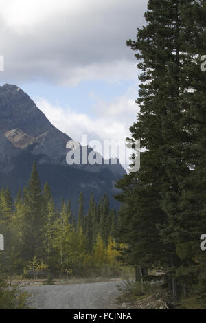 Alberta back road drive on rustic and scenic Spray Lakes Road in Kananaskis County near Canmore and Banff - Stock Image
