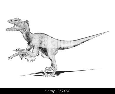 Dinosaurier Utahraptor / dinosaur Utahraptor - Stock Image