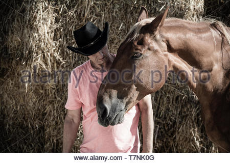 A Cowboy and his Horse - Stock Image