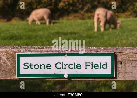 Sign: Stone circle field, seen in Malmsmead, Devon, England, UK - Stock Image