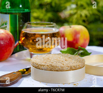 French cheeses collection, piece of fermented cow milk cheese Camembert au Calvados served with French dry apple cider outside in green garden close u - Stock Image