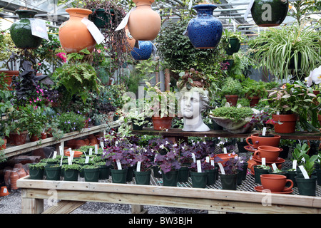 Variety of plants and pots inside a commercial greenhouse - Stock Image