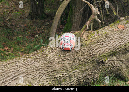 mysterious mask lying on fallen tree - Stock Image