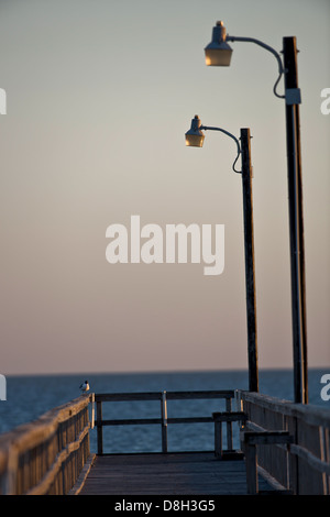 Fishing peer in the evening sun, sea gull sitting at the very end of it. - Stock Image