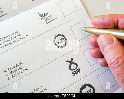 Man voting on ballot paper for  Scottish Greens in European Parliament election, Scotland, May 2019 - Stock Image