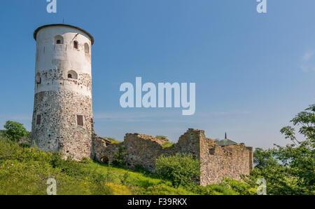 Stegeborg fortress - Stock Image