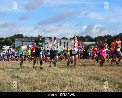 Runners taking part in a trail running race - Stock Image