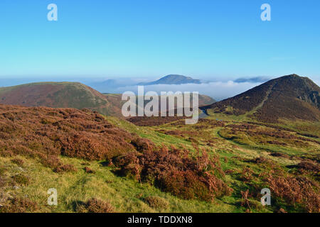 View from The Long Mynd in the Shropshire Hills, UK, with peaks above the clouds. - Stock Image