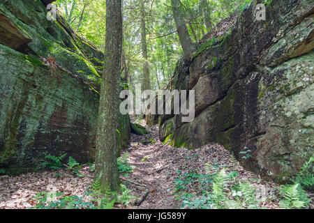 Laurel-Snow State Natural Area, Cumberland Trail through two sandstone cliffs - Stock Image