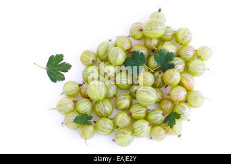 Fresh green gooseberry isolated on white background, fruits - Stock Image