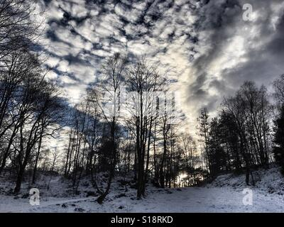 Winter sky - Stock Image
