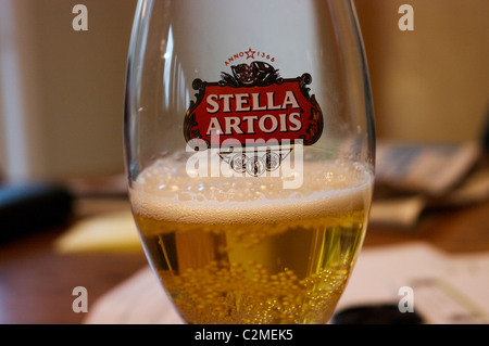 stella beer in glass - Stock Image
