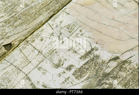 Macro shot of the cracked and crazed surface of a small boat hull. - Stock Image