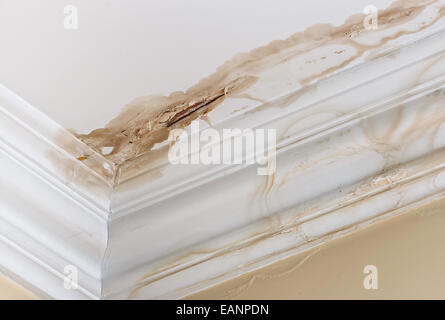 Peeling paint on an interior ceiling a result of water damage caused by a leaking pipe dripping down from upstairs. - Stock Image