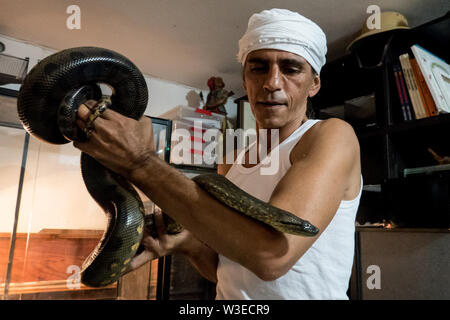 Karmei Yosef, Israel. 15th July, 2019. Israeli snake handler, breeder and catcher RAFAEL YIFRACH, 52, handles a baby Anaconda in his home in Karmei Yosef. Yifrach has been intrigued by snakes since he was seven years old, he's been bitten by venomous snakes 18 times and currently grows and breeds some 300 non venomous snakes. World Snake Day is celebrated 16th July contributing to the cause of conservation of a sometimes dangerous but mostly misrepresented reptile. Credit: Nir Alon/Alamy Live News. - Stock Image