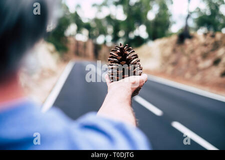 Woman cacuasian hand close up taking pinecone natural - road in defocused background - concept of environemnt and love takie care of nature - mountain - Stock Image