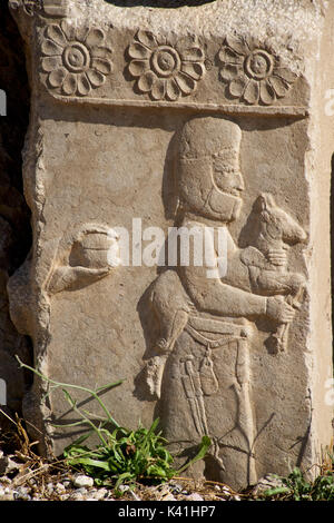 Intricate carving alongside the Palace of Darius the Great, also known as the Tachara, Persepolis, Shiraz, Iran - Stock Image