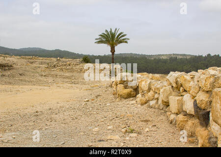 Excavated ruins and restored stone walls in the ancient city of Meggido in Northern Israel. This place is otherwise known as Armegeddon the future sce - Stock Image