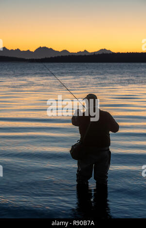 A fly fisherman gets ready to wade into salt water at sunrise and fly fish for coastal cutthroat trout and salmon at a beach on the north west coastli - Stock Image