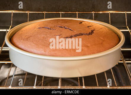 Part two in a series showing how cake batter rises when it cooks.  See also image number ERMCDD - Stock Image