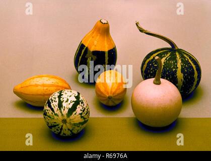Gourd still life - Stock Image