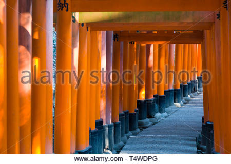 Torii painted in a vermilion red-orange color that is associated with the soul of Inari Okami and blessings for life, the earth and production, the to - Stock Image