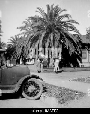 Two women stand underneath a massive palm tree in the front yard of a California home, ca. 1925. - Stock Image