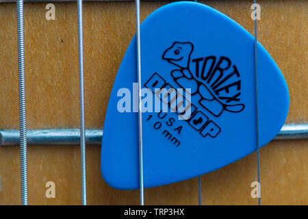Close up of an electric guitar Tortex 1.0mm plectrum made by Dunlop (U.S.A) between the strings of a guitar. - Stock Image