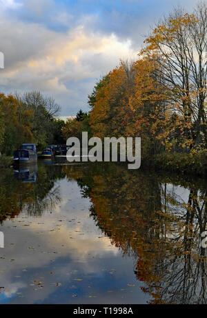 Cw 6655 Top of the Rufford arm 29.10.18 On the eastern side of Burscough along the Leeds and Liverpool canal just beyond the junction. - Stock Image