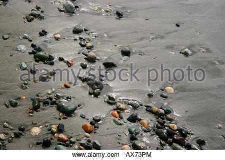 Small rocks scattered on the beach Washington USA 2005 - Stock Image