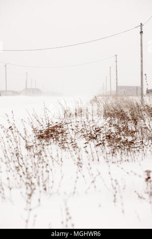 Winter blizzard at the side of a road with weeds and distant power lines and snow covered houses on the roadside - Stock Image