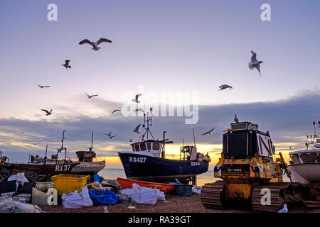 Hastings East Sussex, UK. 1st Jan, 2019. Seagulls whirl over Hastings fishing boats at dawn on New Year's Day. Hastings with 25 working boats has one of the largest beach launched fishing boat fleets in Europe. - Stock Image