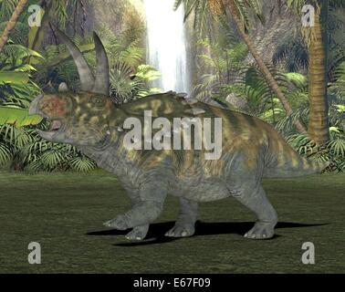 Dinosaurier Coahuilaceratopsi / dinosaur Coahuilaceratops - Stock Image