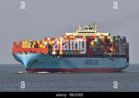 Maersk Seletar - Stock Image