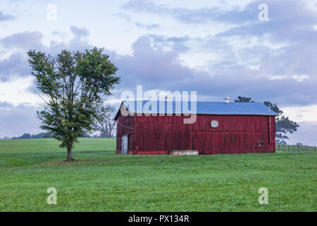 LIMESTONE, TN, USA-9/29/18:  A red barn and single tree in a grass meadow. - Stock Image