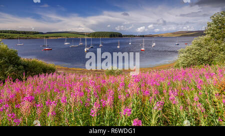 Boats moored on Llyn Brenig reservoir, North Wales on a windy day - Stock Image