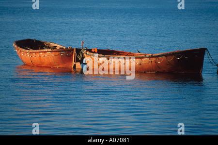 Fishing Boats, Lake Pichola, Udaipur, Rajasthan, India - Stock Image