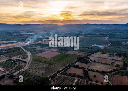 top view of fields and plantations at sunset near of the mountains in Tarragona, green field agriculture industry aerial view - Stock Image
